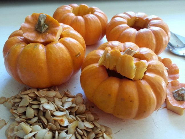 Cleaned Mini Pumpkins | Goan Imports